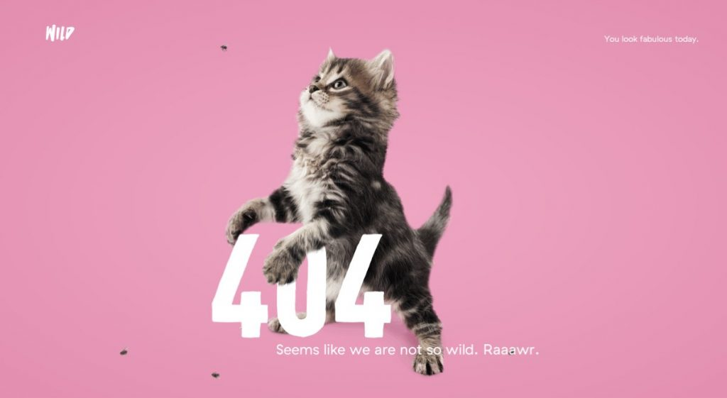 its-hard-to-beat-the-combination-of-a-kitten-and-a-compliment-from-design-agency-wild