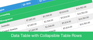 Data Table with Collapsible Table Rows