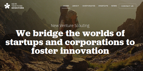 NEW VENTURE SCOUTING
