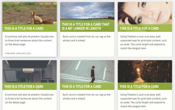 Flexbox Cards By Lindsey